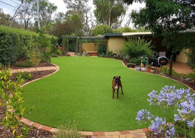 Hackett Artificial Lawn